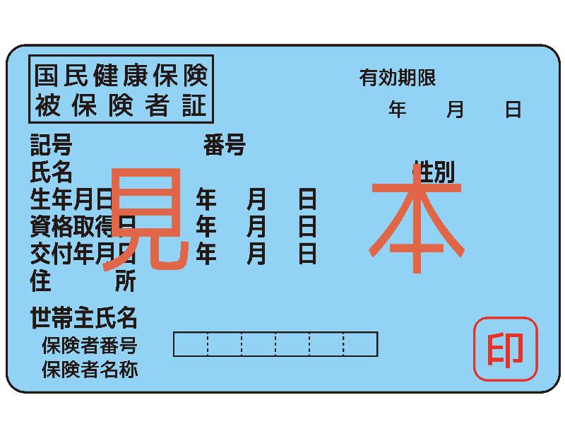 日本の国民健康保険(海外療養費制度)